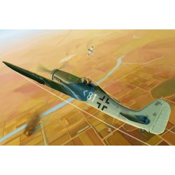 Focke Wulf Fw190D-11 1/48