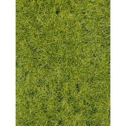 Flocage Herbes Sauvages Vert Foncé / Static Wild Grass Dark Green, 6mm, 75gr