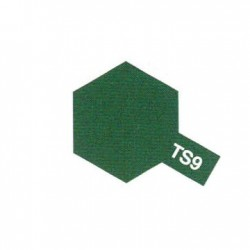 TS9 Vert Anglais Brillant / Birtish English Gloss