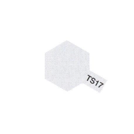 TS17 Aluminium Brillant / Aluminimum Gloss