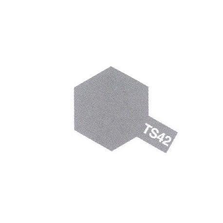 TS42 Gris Clair Métal Brillant / Metallic Light Grey Gloss