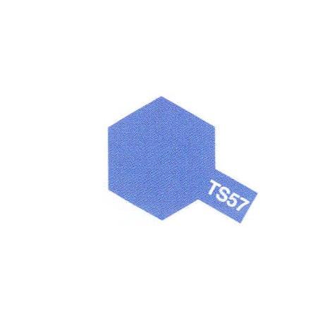 TS57 Bleu Violet Brillant / Blue Violet Gloss