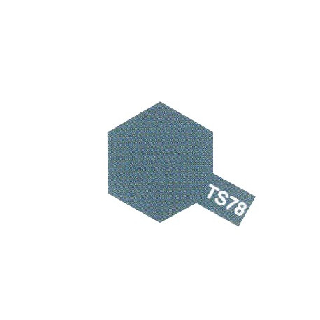 TS78 Gris Campagne / Field Grey Mat