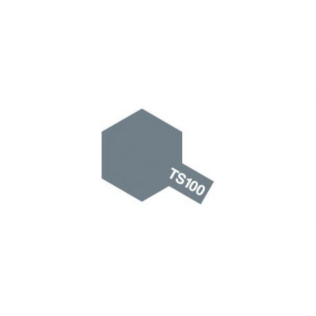 TS100 Gun Metal Clair / Metallic Light Gun
