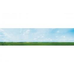 Décor de fond Mural Paysage, 291cm