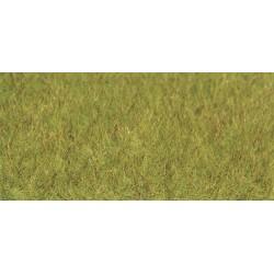 Fibres d'herbes XL Printemps / Statig grass XL Spring, 10mm, 50gr