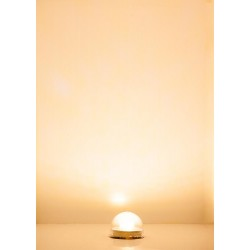 Culot d'éclairage à LED, blanc chaud / Lighting fixture LED, warm white