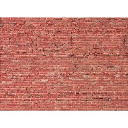 Plaque de mur tunnel / Wall card, Tunnel H0