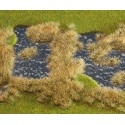 Segment de paysage étang marécageux / Landscape segment, Pond