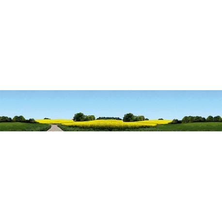 Décor de fond Paysage de champs Ostholstein Background