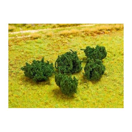 5 Haies de murier / Bramble hedges