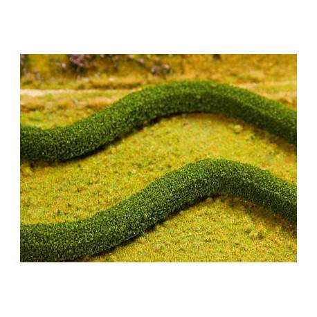 2 Haies de décoration charmille / Decorative hedges European hornbeams