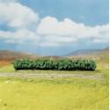 3 Haies, vert clair / Hedges, light green