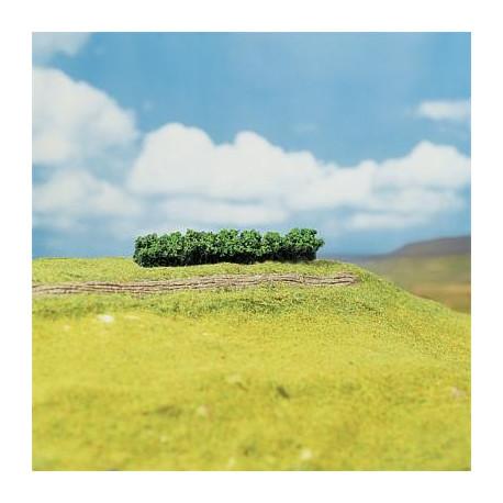 4 haies, vert clair / Hedges, light green