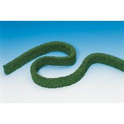 2 Haies / 2 Hedges