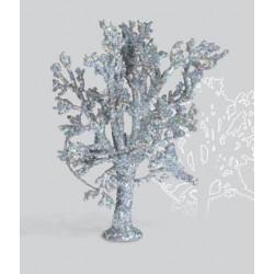 Sapin Argenté / Fir Tree, 10cm