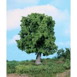 Chêne / Oak Tree, 18cm