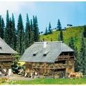 Maison de la Forêt Noire / Black Forest house N