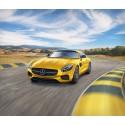 Mercedes-AMG GT 1/24