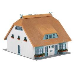 Maison à toit de roseaux / Reeds-thatch roof H0