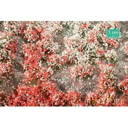 Touffes de fleurs été / Blossom Tufts summer 1/87