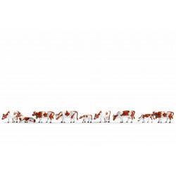 Vaches / Caws N