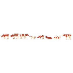 Vaches, tachetées brunes / Cows, brown flecked N