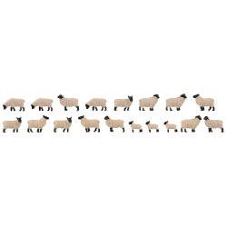 18 Moutons à tête noire allemands / 18 Black-headed sheep H0