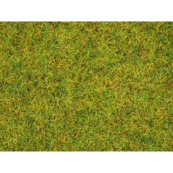 Herbe Vert Eté / Scatter Grass Summer Meadow, 2,5 mm, 20 gr