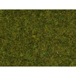 Herbe Vert Pré / Scatter Grass Meadow, 2,5 mm, 20 gr