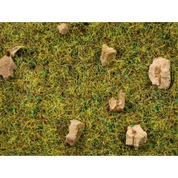 Herbe Sol de Forêt de bois / Scatter Grass Alpine Meadow, 2,5 mm, 20 gr