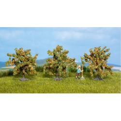 3 Orangers / Orange Trees, 4 cm