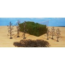 15 arbres en kit 8-12 cm